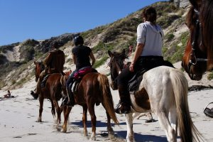 Horse riding De Kelders